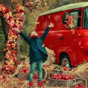 осень на дороге