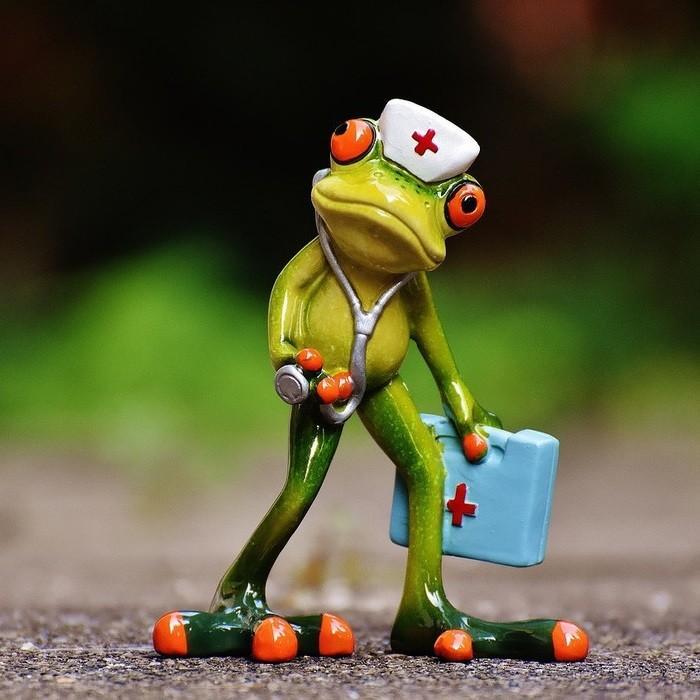 доктор лягушка