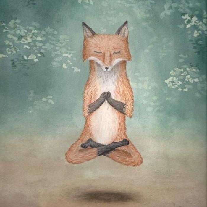 лиса медитация