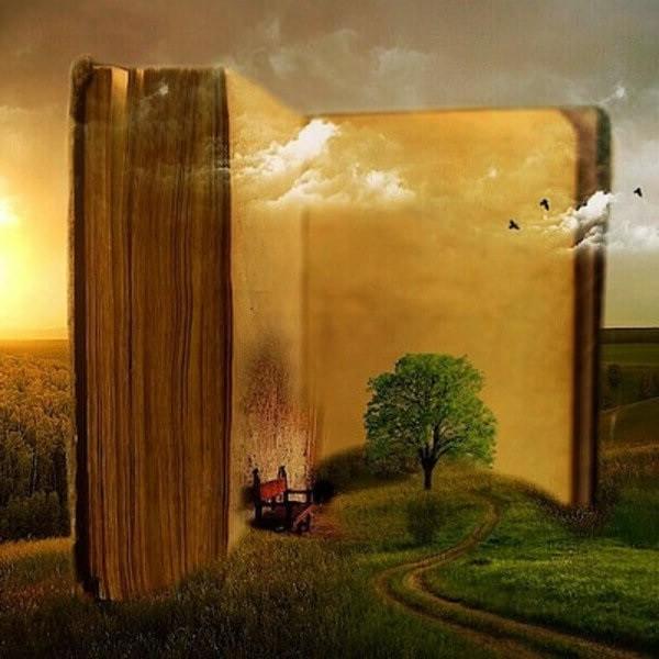 мир в книге