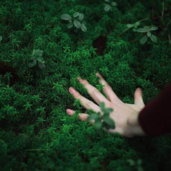 рука в магической траве