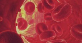 Всё о крови: 78 захватывающих фактов о крови человека
