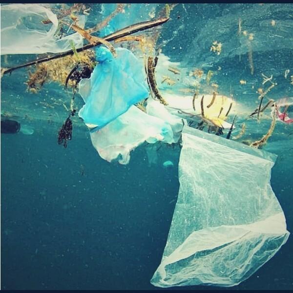 пластик плавает в воде
