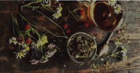 Магические травы и растения: 24 растения для здоровья и духовной защиты