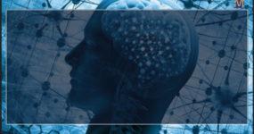 Как улучшить память человека: всестороннее научное руководство