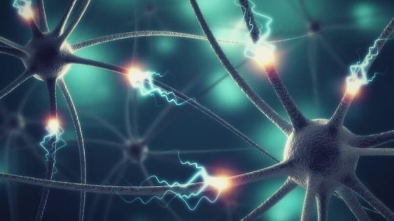 старение головного мозга