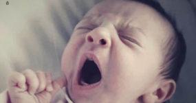 Заразительное зевание: почему зеваешь, когда видишь зевающего?