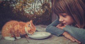 Кто такие эмпаты: 40 характерных признаков
