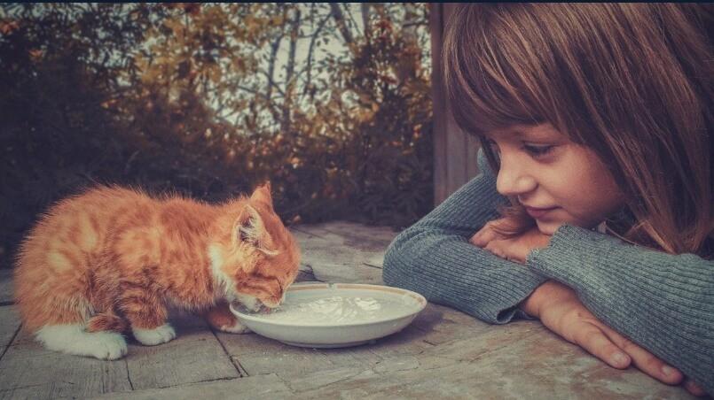 Что такое Эмпатия - Узнай Что Такое