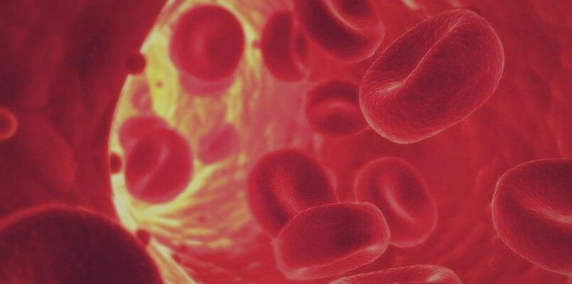 интересные факты о крови человека