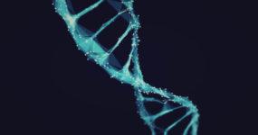 Теория Эволюции Дарвина: правда или ложь?