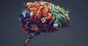 Интересные факты о человеческом мозге: 61 секрет