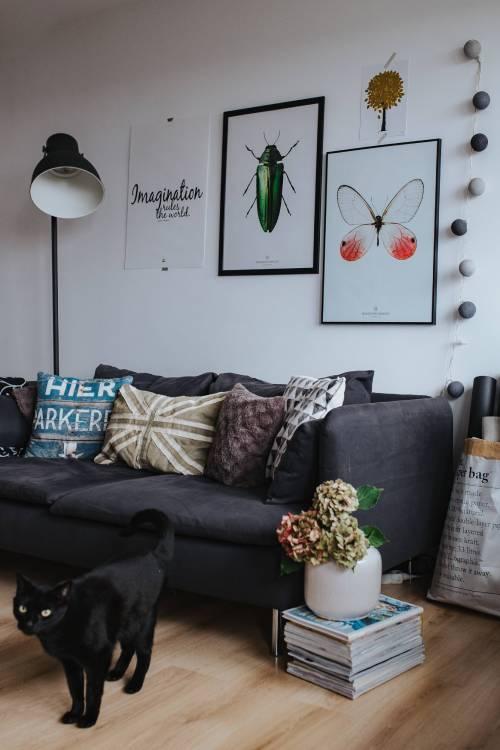 комната минималиста